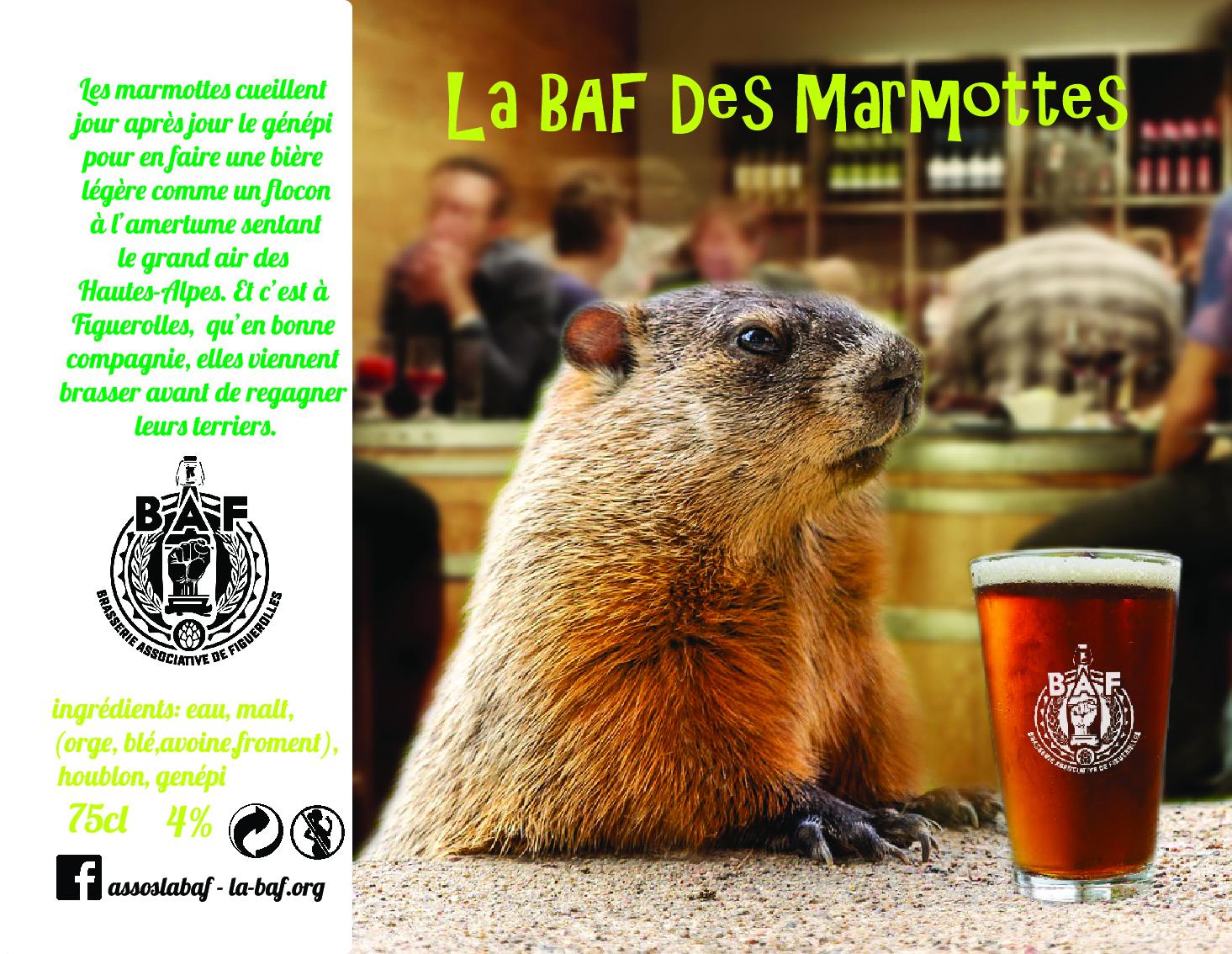 baf marmotte V3